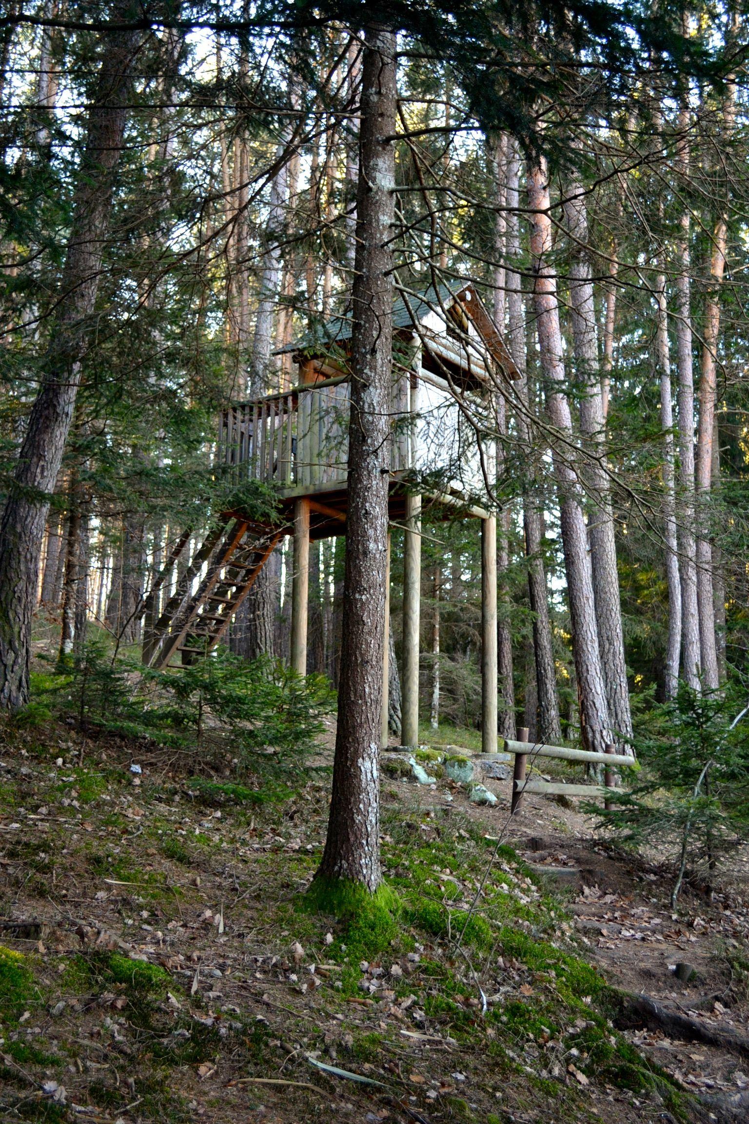 Baselga di pin for 6000 piedi quadrati a casa