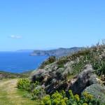 Cinque cose da vedere in Sardegna in primavera