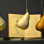 Il Museo della Frutta di Torino