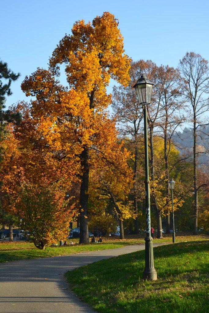 Torino, Parco del Valentino